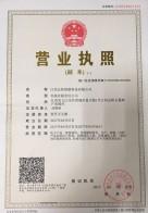 江西亚游集团网址 绿能科技有限公司营业执照
